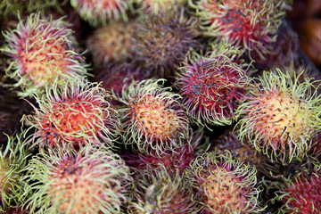 Rambutan background
