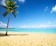 Fototapeten,hintergrund,bellen,strand,schön