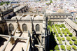 Cathedral of Seville view from La Giralda, Andalusia, Spain