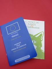 carnet et passeport