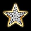 Star in diamonds. Detailed vector.