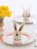 easter holiday bunny napkin, table decorations