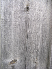 Texture of wooden board with cracks and knots
