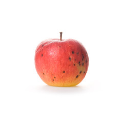 Ripe spoilage red apple isolated on white