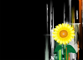 Digital painting of sunflower in background of black