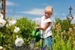 Kleines Mädchen gießt Blumen