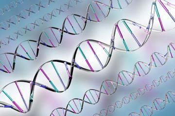 DNA II
