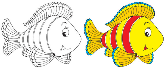 Coral Fish (black-and-white and color illustrations)