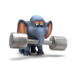 Elephant lifting weights