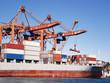 Cargo container ship under cranes in sea port