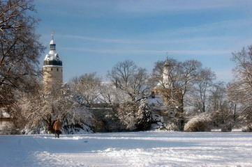 Türme des Schlosses Altenburg
