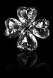 クローバーのダイヤモンド