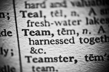 Definition of Team