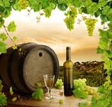 Fototapety Wine still life and vineyard