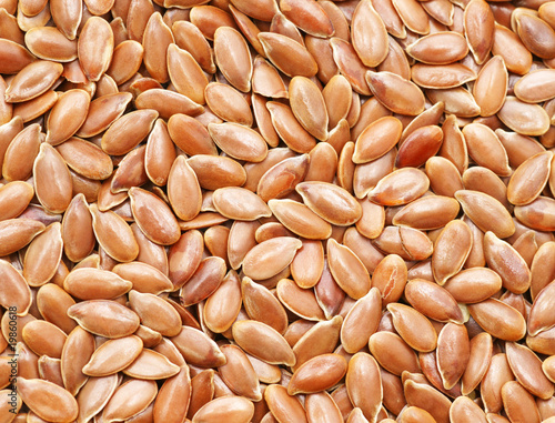 Flax Seed Close-up - Leinsamen Nahaufnahme