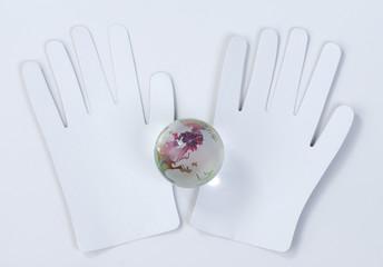 the glass globe