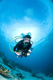 Fototapety Plongeuse le long du récif, photo sous marine, Lembeh, IndonŽsie