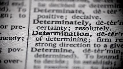 Definition of Determination