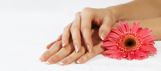 Hands with french manicure and pink flower