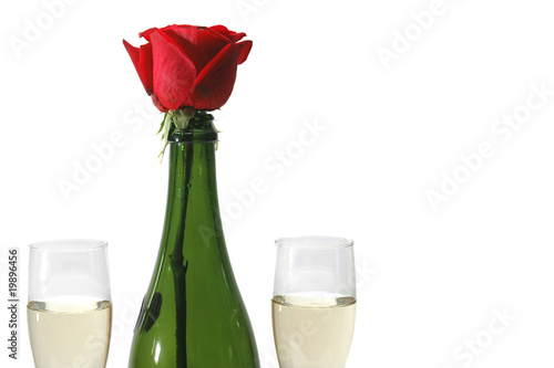 Champagne and rose