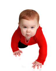 Baby crawling on white background