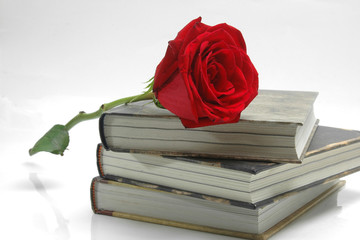 Books and rose