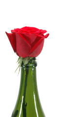 Rosa en una botella