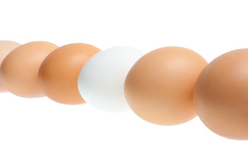 Group of brown and one white eggs isolated on white background