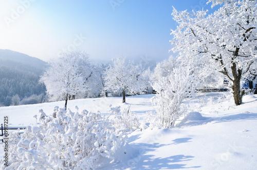 Winterlandschaft in Österreich - 19917225