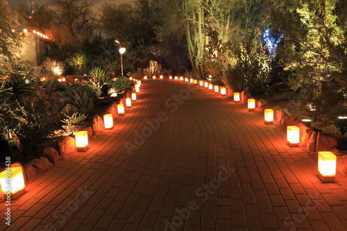 luminarias through desert foliage - 19924438