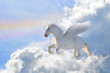 Leinwandbild Motiv pegasus in the clouds