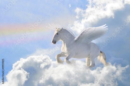 Leinwanddruck Bild pegasus in the clouds