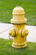 Yellow fire hydrant on the green grass