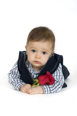 Cute baby boy holding a red rose