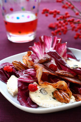 Radicchio and gorgonzola salad