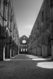 Abandoned Cathedrale Of San Galgano