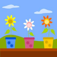 vasetti con fiori