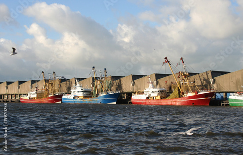 Fishing Trawlers in the Harbor