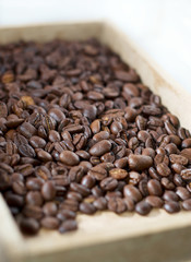 Coffee beans in wooden box