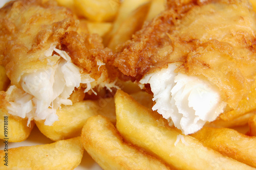 Fish and chips - 19978818