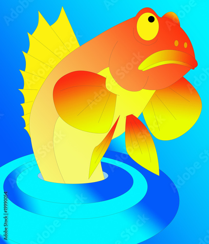 Leinwanddruck Bild abstract colorful fish