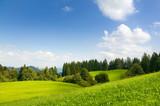 Fototapety Sommergrüne Naturlandschaft in Süddeutschland