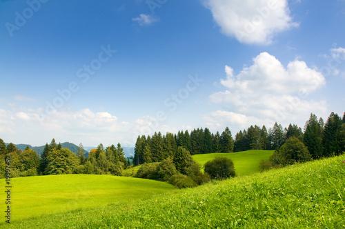 Fototapeten,landschaft,natur,sommer,grün