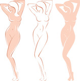 Fototapety Three variations of beautiful nude woman silhouette