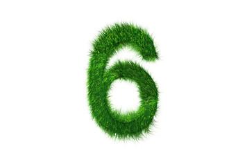 Grüne Nummer 6