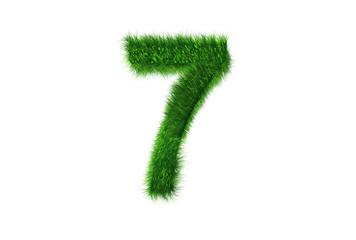 Grüne Nummer 7