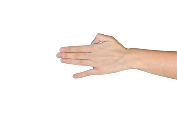 Hand's dog