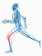 Skelett - schmerzendes Kniegelenk