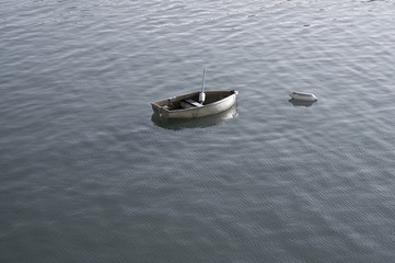 Solitary boat