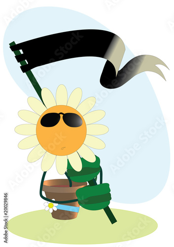 vector cartoon camomile
